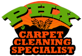 Phoenix Carpet Cleaning Specialist