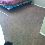 goodyear carpet before