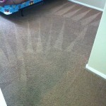 goodyear carpet after